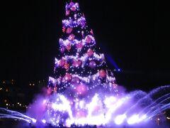 ディズニー クリスマス(東京ディズニーシー)
