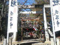 やってきました千代保神社!  ネットで岐阜県の観光名所調べてたらヒットしました。 お揚げを買ってそれを祀るというのが面白そうだったので妻と二人で やってきました。
