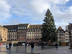 クレベール広場まで来ました。大きなクリスマスツリーが立っています。 ここまで来れば集合場所までは一直線なので、迷子になることはありません。ここでツアーを離れます。