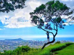 父がハワイで1番したい事は 「ハワイの写真をたくさん撮る」です まずはここ! ワタクシも撮りたかったタンタラスの丘  2年前のハワイでもタンタラス来たけど その場所より更に進むと こんなステキなスポットがあったのね~  木に登る台があったけど倒れいて私は登れず 息子でさえギリ登れた感じ