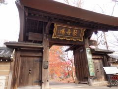 行ってみたいなと思っていた九品仏浄真寺。  少しでも見られれば良いかなと紅葉の見納めにやってきました。  境内へはいると、、