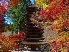 午前中「談山神社」の紅葉を見て、バスで25分、