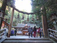 「狭井神社」。 三輪の神様の荒魂を祀る神社で、病気平癒の神様。 その裏手に、