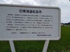 「旧東海道松並木」三ケ野。10:20通過。江戸時代の東海道筋。1号線の脇道ですが、工業地帯の為車が多く歩道もありません。注意して歩く必要あり。