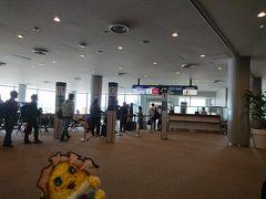 というわけで、成田空港。 これより、一緒にANAのチェンナイ直行便に搭乗だ。  「あー、ここまで来たら、もう逃げられないなっしな…。 こうなったら、梨は度胸!行ってみるなっしー♪」