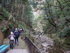 さて、ここからが山道ですね。 四十八滝というくらいですから、これから先は滝が連続してあるんでしょうね。