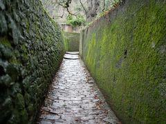 緑の壁が綺麗ですね。しかし、このシュランゲン小道ですが思った以上の長い坂です。