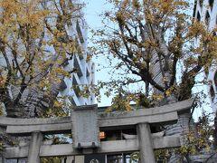 赤穂浪士討ち入りの日の12月4日。 12月にしては暖かく天気も良かったので目黒駅から散策しながら泉岳寺を目指します。 誕生八幡神社の境内のイチョウはまだ黄葉していました