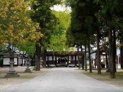 駅から新市駅の方へと向かうと、すぐに広い境内を持つ神社があった。 素盞嗚神社とあり、由緒書きを読んでみると、何と、ここも備後一宮だった。 この日三度目の偶然に、正直驚く。 思わぬところでもうひとつの備後一宮に出会えたので、迷わず参拝することにした。 本殿は、福山藩の初代藩主である水野勝成によるものらしい。