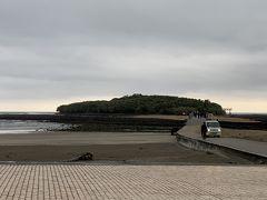 青島が見えてきました。青島は全周1.5㎞の小さな島。江戸時代には限られた人しか入ることができなかったこともあり、手つかずの自然が残っていて、200種以上もの植物が存在するそうです。