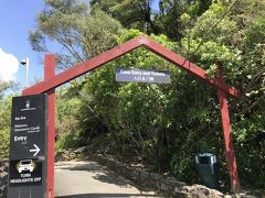 ワイトモに到着、ワイトモ洞窟の入り口と道路を隔てたところに駐車場があります。道路を渡らず、下の通路をくぐって洞窟入り口に行くことができます。