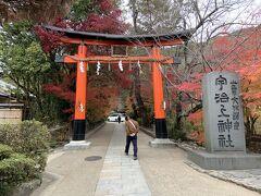 宇治上神社の境内までやってきました。世界遺産だそうです。
