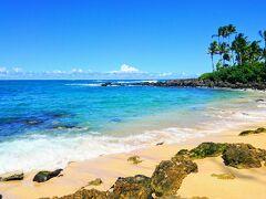 12:13 「ラニアケア ビーチ」 泳いではいるのだが、なかなか上がってこない(苦笑)