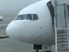 まずは羽田へ  8:00出発のJL500便(B7777ー200) 新千歳空港 20℃/曇り 夏休みのためほぼ満席でした。