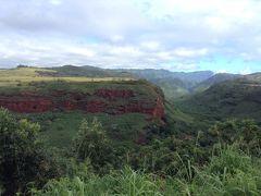ハナペペ・ルックアウト(展望台)からみた渓谷です。ハナペペ川はみえませんでした。