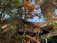 終わりかけの紅葉に囲まれた建物。 これは帰りに撮ったものですが、着いた時には10人くらい並んで待っていました。
