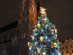 クリスマスツリーがとってもカワイイ