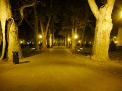 食事を終え、ホテルまで、夜のザグレブを散策しながら帰ります。 ストロスマエル広場を進みます。