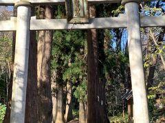 日本武尊(やまとたけるのみこと)と湖の主・南祖坊をまつったところ。鎌倉時代以前から修験僧徒(山伏)の修行場として知られ、江戸時代には南部藩の霊場として発展した。南祖坊の伝説にちなむ鉄のわらじが奉納されている