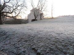 気温は氷点下3度ぐらいですかね。霜が降りてました。  このぐらいの方がプラハっぽくていいです。