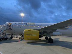 まずはフランスからローマに、スペイン系LCCのブエリング航空で移動します。1時間半ほどのフライトでした