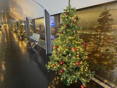 ルクセンブルグ国際空港 (LUX)