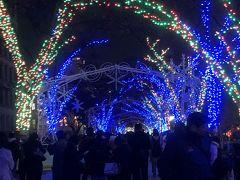☆大阪市役所☆  市役所横から中之島公園に向かって歩いていきます。  毎年ここの風景はあまり変わりません。
