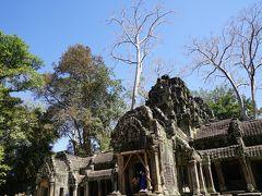 タ・プローム寺院です。
