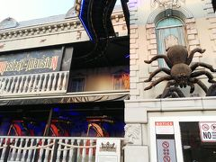 アジアンティークには観覧車や遊具がありますが、なぜかこのクモが気になって。