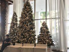 一週間、悩んだ末に選んだ宿泊先は 「アロヒラニ.リゾート.ワイキキビーチ」です。 旧パシフィックビーチHotelでしたが オーナーが変わり、2018年に全面改装が完了したようです。 もうすぐ南国のクリスマスがやって来ます(*^_^*)