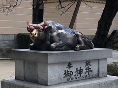 御神牛 この牛の頭を撫でると賢くなれるらしいので、頭から顔はピカピカ。  御神牛と2ショット撮りたい人の列。。。 そこの内地人ども!横入りしない!ツアーガイドも注意しなさいよ!