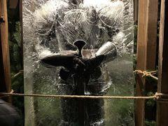 ドレスデン城の中庭、シュタールホーフのクリスマスマーケットです。 氷漬けの鎧兜がお出迎えしています。