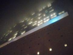 ホテルで荷物をおろした後、新年最初の第九を聞くため、バスと地下鉄を乗り継いで、埠頭付近にあるエルプフィルハーモニーへ。ハンブルクは霧が多く、夜になると雪状になって降って少々寒い。霧のエルプフィルハーモニーは幻想的だったが、現地で演奏会の会場が異なることが発覚した!