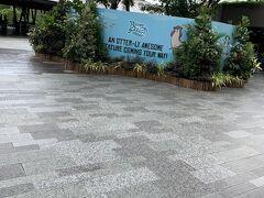 お隣のリバーサファリに行きます。我が家は広くて歩くのが大変な(それが醍醐味ですが)シンガポール動物園よりも屋根や屋内が多いリバーサファリがお好みです。  こちらのチケットも当日、リバーサファリ(シンガポール動物園)の公式HPから購入しeチケットをスマホの画面に出して園内に入りました。 チケット購入の待ち時間がないため快適です。