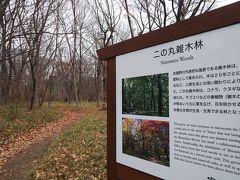 雑木林もすっかり葉が落ちて 前回は秋だったと実感