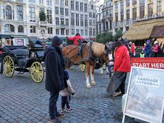グランプラスに来ると、馬車がいました。 4人乗れて、30分、50ユーロ。