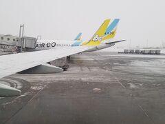 久しぶりの飛行機✈️  北海道の翼に初搭乗