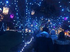 フェスティバル オブ ライト