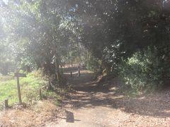 そこから数分歩いて行くと泉の森に到着