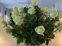 Veranda (ベランダ)  この日、ぎっちゃん様ご夫妻からお招待行き 喜んで参りました~~(^^)  素敵なWhite Rose Hawaiiで薔薇は珍しいですね 花言葉は『尊敬・純潔・約束を守る』 また、その真っ白な姿から、何色にも染まる可能性を秘めたその様子に、私はあなたにふさわしいという花言葉もあります (実際klklさんもブーケに使いました~失敗しましたがね。笑笑)