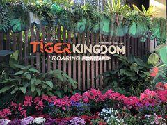 娘が行きたいというので、タイガーキングダム