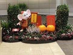 チャンギ空港到着です 干支のネズミがお出迎え