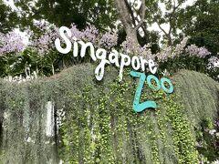 午後からツアーが始りました ガイドさんは変わりました シンガポール動物園