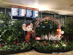 【1月11日(土)★2日目<滞在1日目>】 定刻より15分ほど早く到着。 チャンギ空港では、今年の干支のねずみちゃん達のお出迎え。