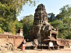 タプローム寺院。 ここはアンジェリーナ・ジョリー主演の映画、トゥームレイダーのロケ地として有名な場所です。  ガイドさん「若いころのアンジェリーナ・ジョリー、安室奈美恵に似てる」  ・・・そうかなぁ?