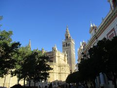 Cathedral Giralda  こちらは大聖堂です。右には有名なヒラルダの塔が見えます。 世界的にも有名なヒラルダの塔は高さは97mあります。 ヒラルダというのは風見の旗のことを意味していました。 もともとはミナレットとして12世紀末にイスラム教徒によって建設されました。 でも実はその前にローマ人が築いた土台を利用して建てられました。 尖塔の上に鐘楼を被せられたのは1568年になってからです。 プラテレスコ様式のものです。 鐘楼のブロンズの女人像(高さ4m、1288kgあります)はコンスタンティン大帝の旗を持っています。ローマ人の衣装を纏い片手に盾、もう一方に椰子の葉を持っているというものもあるのですが・・・。 下からしか見てないので、よくわかりませんでした。(-_-;)  ところで塔の内部は階段ではなく、緩やかなスロープになっているようです。これは馬に乗って上る場合を想定して造られました。 高さ70mからはセビリアが見渡せます。