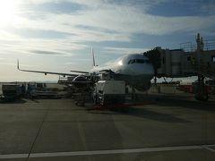 今回お世話になったA321 この中で古い部類?の全席モニター付きの機体でした