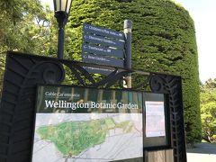 また、同じく頂上周辺には、ウェリントン植物園もあります。非常に広い植物園で、園内を歩いて、そのまま市街地まで降りていくこともできるそうです。