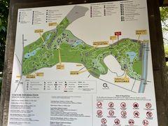 まだ部屋には入らず、そのまま地下鉄に乗って シンガポール植物園へ。Botanic Gardens Sta.  地図は見えにくいですが、地上に出てから(右・北側)、 有料のOrchid Gardenまで意外に遠く、1.1kmの徒歩。 とにかく暑い。バスで来て左・南側から行った方が体力の 消耗は少ないかも。
