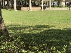 京鼎樓で ヘチマの小籠包を堪能して またMRTに乗ります この画像は中山駅の近くの林森公園 先程 総督府見学の時 ガイドさんが教えてくれた鳥居が有りました 「…日本統治時代の第七代台湾総督を務めた明石元二郎の遺言により台湾のこの地に埋葬されたお墓にこの鳥居が建てられていたそうです。小さい方は明石台湾総督の秘書を務めた鎌田正威の墓に建てられた鳥居だそうですた。…」 台湾の方々が のちの時代に整備してくださったそうです